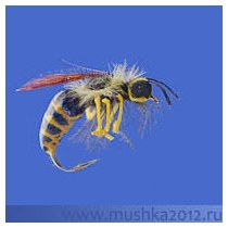 R001-STRIPED FLY